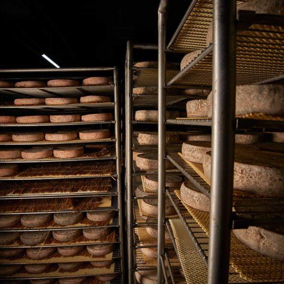 Cave d'affinage - Fromages AOP Saint-Nectaire
